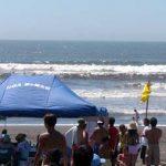 ゴミの海でサーフスケーターズ2003