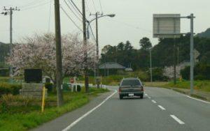 桜を抜けて・南千葉へ