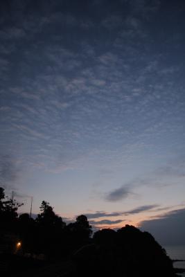 土佐二人旅2008 最終日